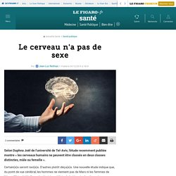 Le cerveau n'a pas de sexe