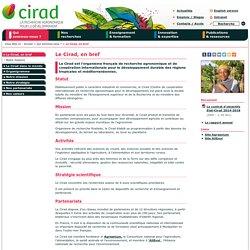 Le Cirad, en bref