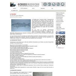 Le Gyotaku - echosmouche.fr