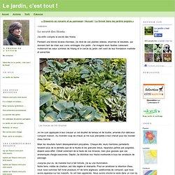 Le jardin, c'est tout !: Le secret des Hosta