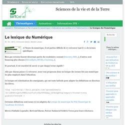 Le lexique du Numérique