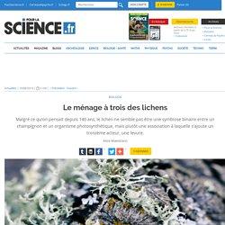 Le ménage à trois des lichens