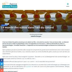 Le monde des nanos dans l'œil du canard
