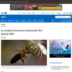 Le nombre d'insectes a baissé de 78% depuis 1989