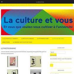 Le photogramme – La culture et vous