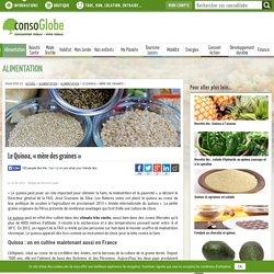 """Le Quinoa, """"mère des graines"""""""