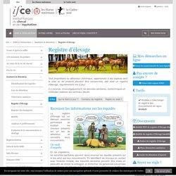 Le Registre d'élevage chez les chevaux