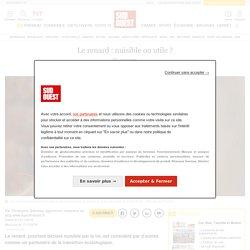 SUD OUEST 12/11/19 Le renard : nuisible ou utile?