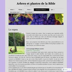 Le repos – Arbres et plantes de la Bible
