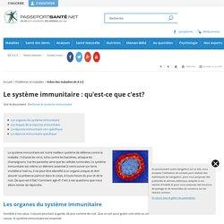 Le système immunitaire : qu'est-ce que c'est?