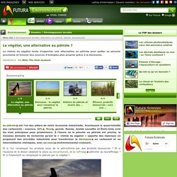 Dossier > Le végétal, une alternative au pétrole ?