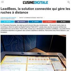 LeadBees, la solution connectée qui gère les ruches à distance