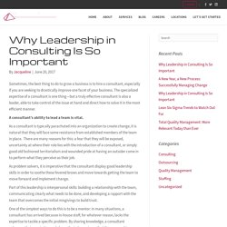Why Leadership in Consulting Is So Important - PQSI