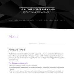 The Global Leadership Award In Sustainable Apparel