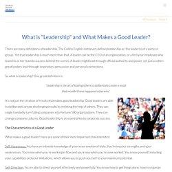 "What is ""Leadership"" and What Makes a Good Leader? – Search Inside Yourself Leadership Institute"