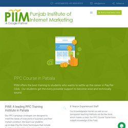 Leading PPC Course Institute in Patiala - Live Project Training