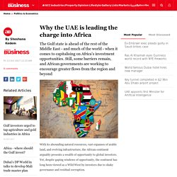 Why the UAE is leading the charge into Africa - Politics & Economics,Politics & Economics,Africa