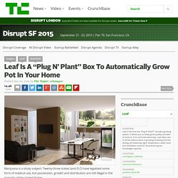 "Leaf Is A ""Plug N' Plant"" Box To Automatically Grow Pot In Your Home"