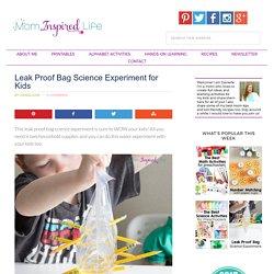 Leak Proof Bag Science Experiment for Kids