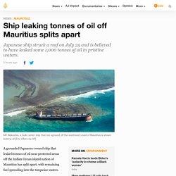 Ship leaking tonnes of oil off Mauritius splits apart