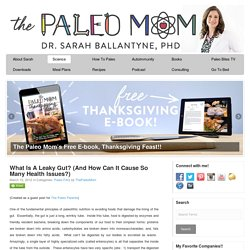 What Is A Leaky Gut? (And How Can It Cause So Many Health Issues?) - The Paleo Mom