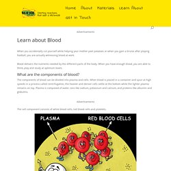 Learn about Blood - Science for Kids