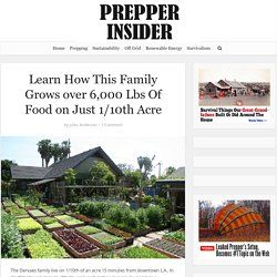 Learn How This Family Grows Over 6,000 Lbs Of Food on Just 1/10th Acre