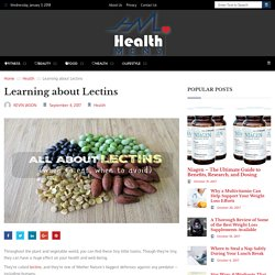 Learning about Lectins