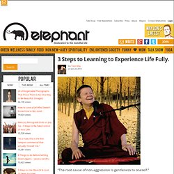3 Steps to Learning to Experience Life Fully.