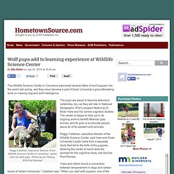 Wolf pups add to learning experience at Wildlife Science Center