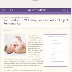 5 Month Old Baby: Learning About Object Permanence