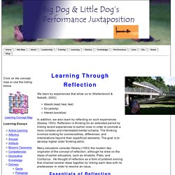 Learning through Reflection