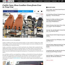 How Leather Gets From the Cow To Your Car Seat