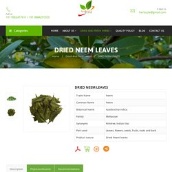 Dried Neem Leaves Supplier