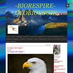 La leçon de l'aigle ! - Biorespire Géobiologie
