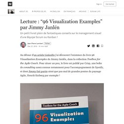 """Lecture : """"96 Visualization Examples"""" par Jimmy Janlén"""