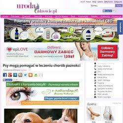 Psy mogą pomagać w leczeniu chorób paznokci. Uroda i Zdrowie - serwis nie tylko dla kobiet!