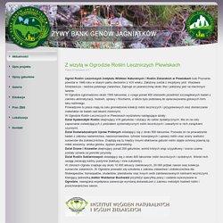 Z wizytą w Ogrodzie Roślin Leczniczych w Plewiskach