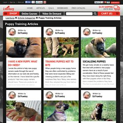Puppy Training Articles