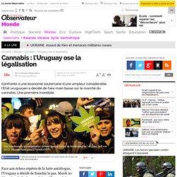 Cannabis : l'Uruguay ose la légalisation