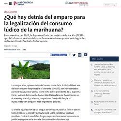 ¿Qué hay detrás del amparo para la legalización del consumo lúdico de la marihuana?