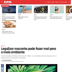 Legalizar maconha pode fazer mal para o meio ambiente