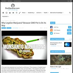 Why Legalize Marijuana? Because GMO Pot Is On Its Way