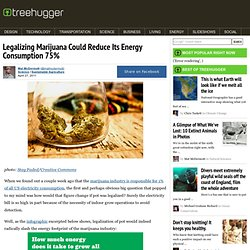 Legalizing Marijuana Could Reduce Its Energy Consumption 75%