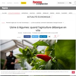 Usine à légumes: quand l'agriculture débarque en ville