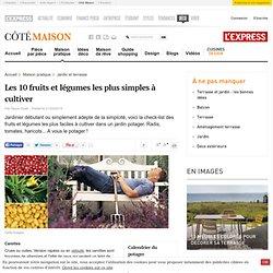 Les 10 fruits et légumes les plus simples à cultiver - Cotemaison.fr
