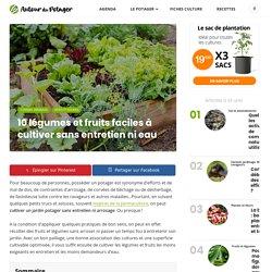 10 légumes et fruits faciles à cultiver sans entretien ni eau