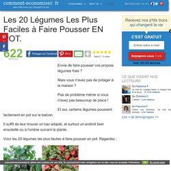 Les 20 Légumes Les Plus Faciles à Faire Pousser EN POT.