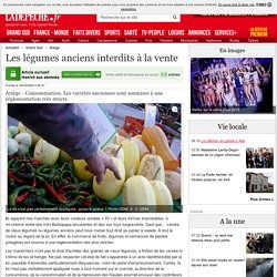 Les légumes anciens interdits à la vente - Ariège