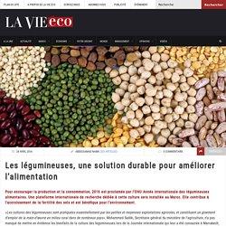 Les légumineuses, une solution durable pour améliorer l'alimentation – Lavieeco